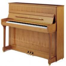 پیانو آکوستیک بکشتاین Bechstein مدل B 120